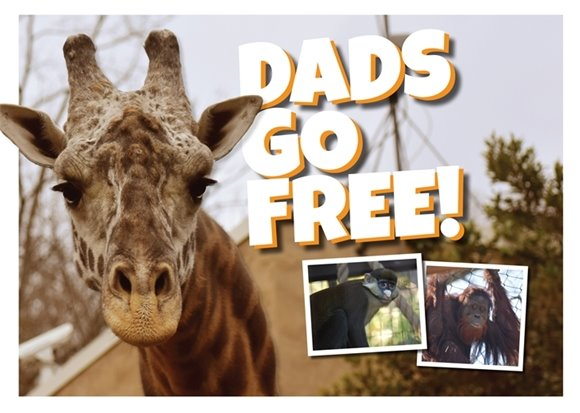 Father's Day at the Greenville Zoo